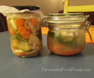 how to implement fermented food to the diet